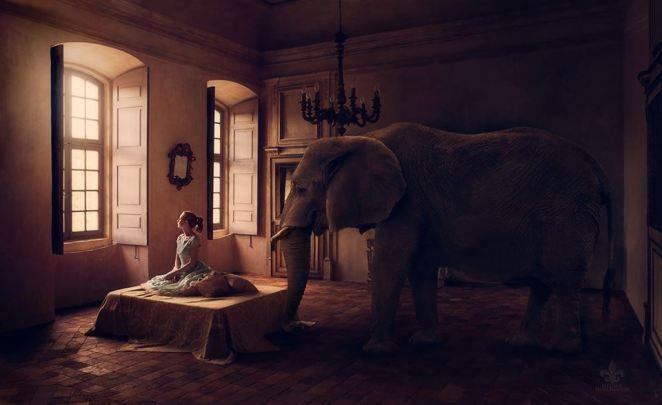 'Elephant in the Room' Photographer: Melissa Hutchinson Concept/model: Jen Brook