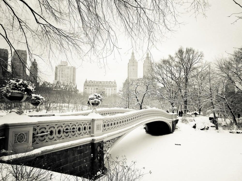 New York Winter - Central Park Snow
