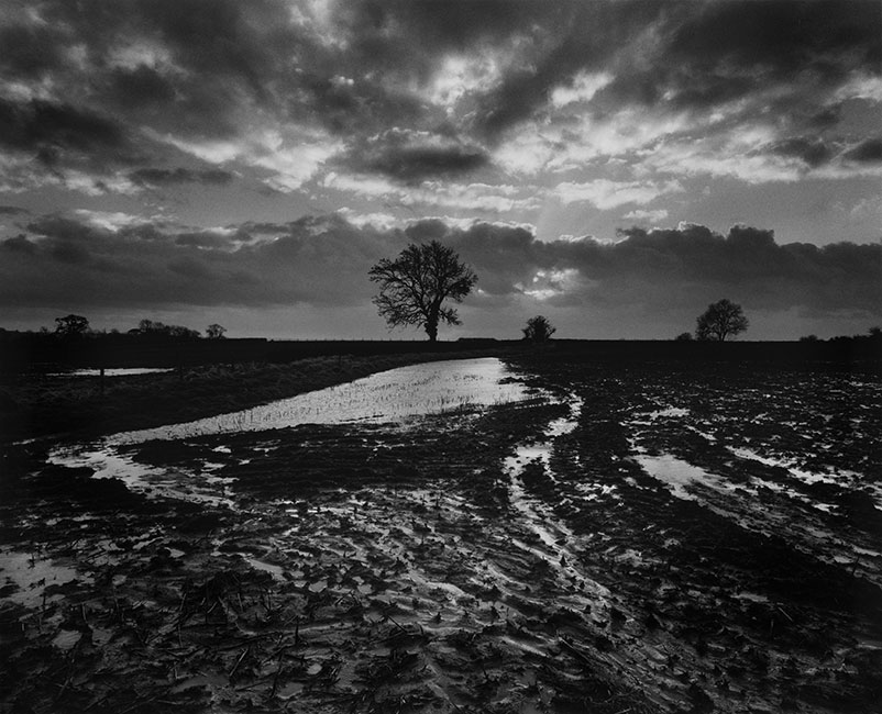 Somerset - Don McCullin