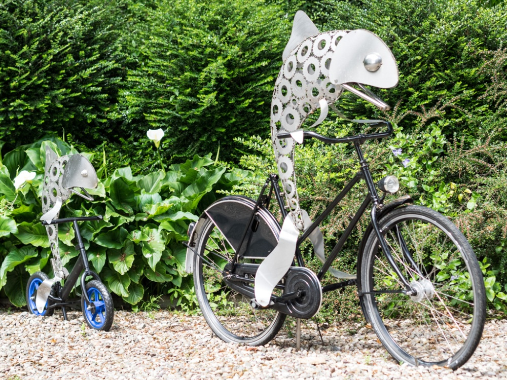 Pike on a Trike & Fish on a Bicycle by Daren Greenhow
