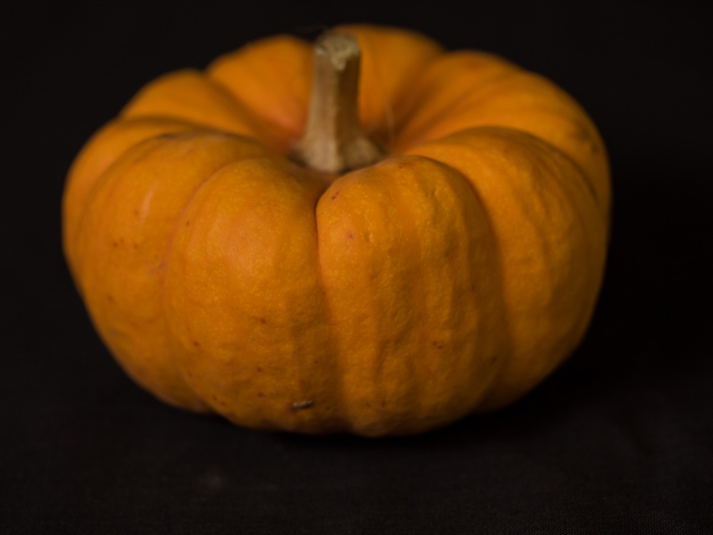 An Old Pumpkin