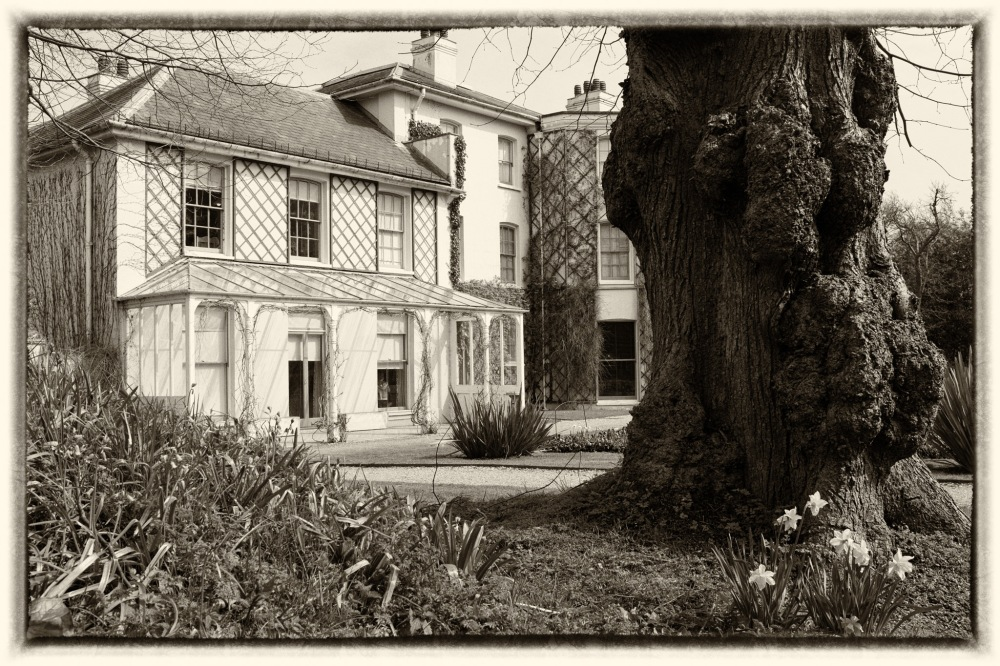 Down House (B&W)