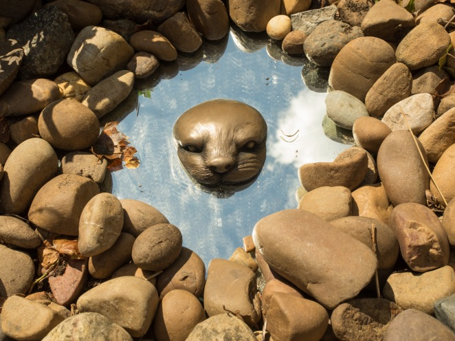 Otter by Martin Adamson