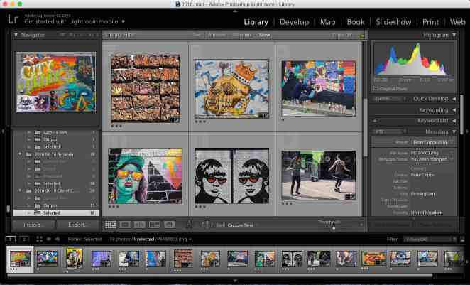 Lightroom Catalog.jpg