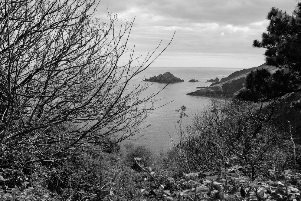 Devon Coastline