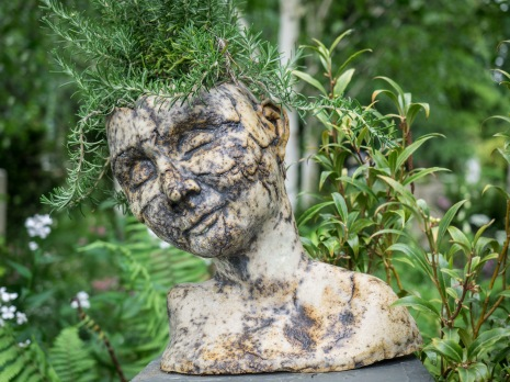 Bust with Plant by Petter Garrard
