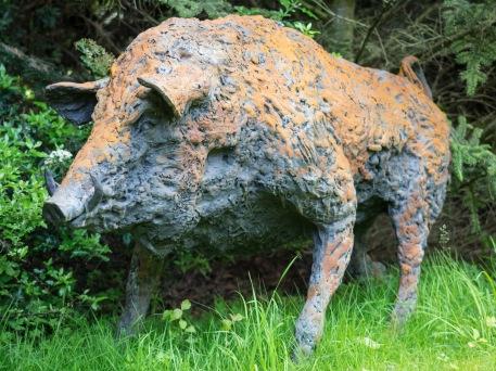 Wild Boar by Rachel Ricketts